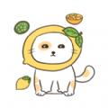 喵喵小猫app