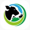 奶牛世界app