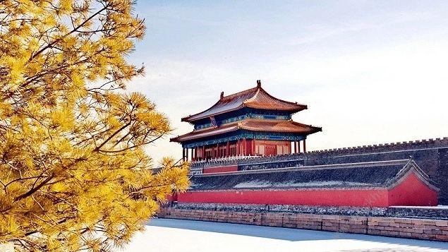 紫禁城600年一见如故直播在哪看 央视紫禁城600岁生日观看入口[多图]图片3