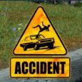 车祸现场模拟器手游版正版 v1.0
