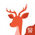 小鹿医生版官网版app下载  v1.3.0