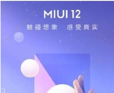 MIUI12申请答题答案是什么 第二次申请答题答案汇总[多图]图片2