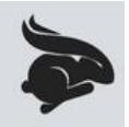 流氓兔直播平台软件app官方版下载 v1.0